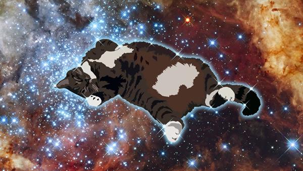 artwork thumbnail: Space Bella 2.0