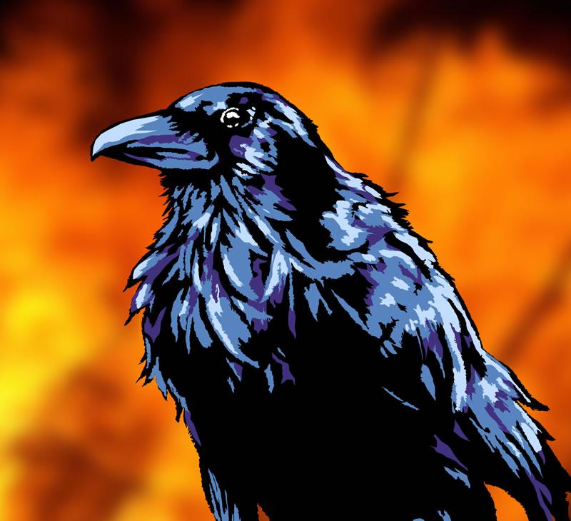 Raven preview